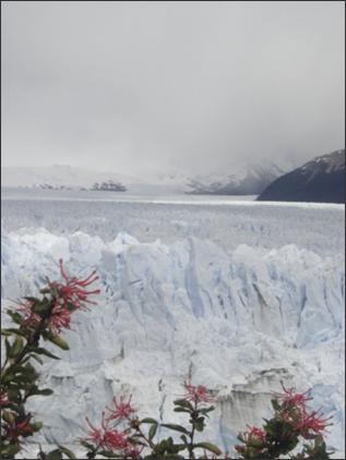 los-glaciares3